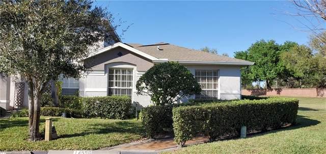 14556 Laguna Beach Circle, Orlando, FL 32824 (MLS #O5843725) :: Icon Premium Realty