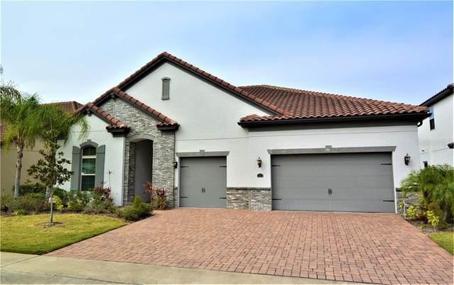 8539 Morehouse Drive, Orlando, FL 32836 (MLS #O5844392) :: GO Realty