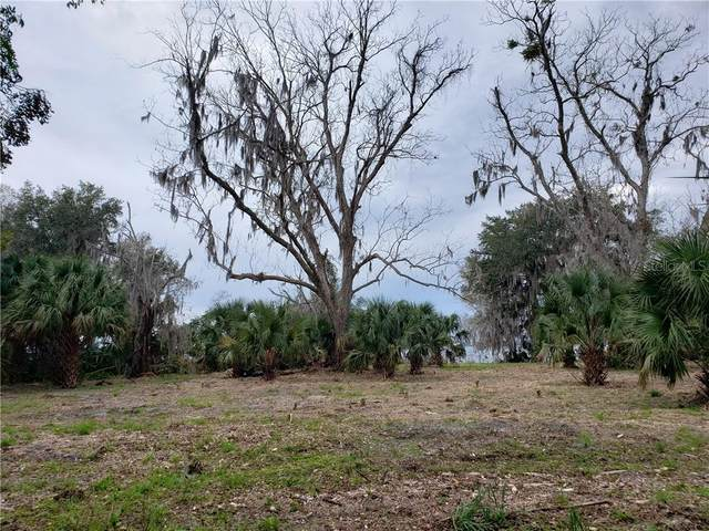 123 Redbird Lane, EAST PALATKA, FL 32131 (MLS #O5844717) :: Southern Associates Realty LLC