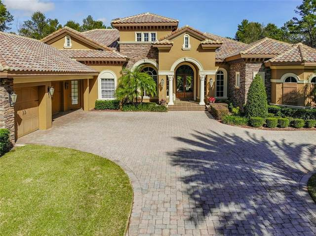 16028 Pendio Drive, Montverde, FL 34756 (MLS #O5844797) :: Heckler Realty