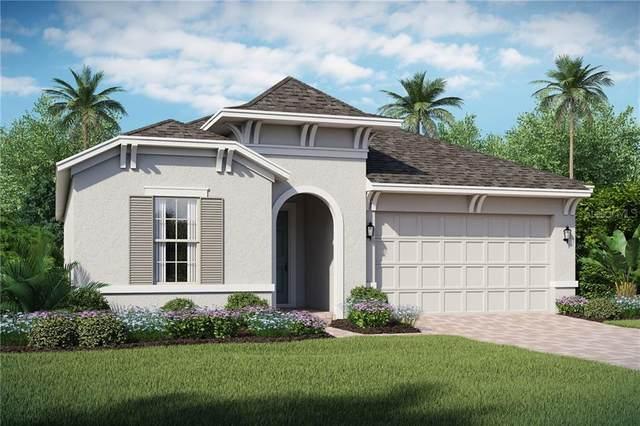 2079 Sola Vista Avenue, Saint Cloud, FL 34771 (MLS #O5844920) :: Homepride Realty Services