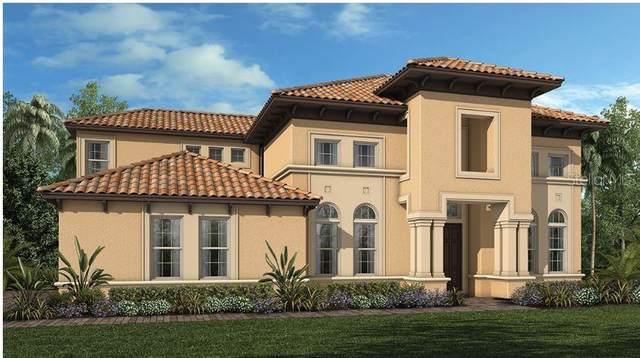 7025 Billie Court, Winter Garden, FL 34787 (MLS #O5845165) :: Cartwright Realty