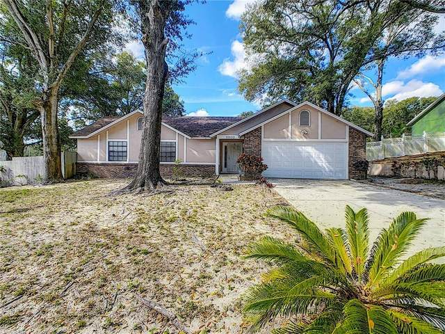 5902 White Egret Lane, Orlando, FL 32810 (MLS #O5845177) :: Rabell Realty Group