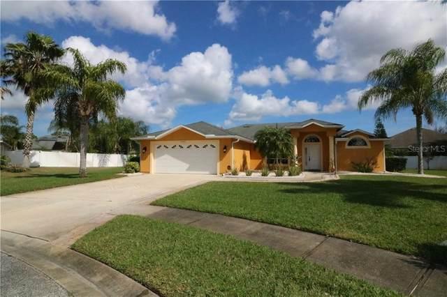2527 Meadow Creek Lane, New Smyrna Beach, FL 32168 (MLS #O5845351) :: Pepine Realty