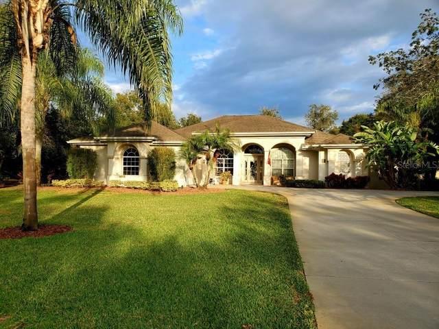 3991 Cree Drive, Ormond Beach, FL 32174 (MLS #O5845484) :: Team Borham at Keller Williams Realty
