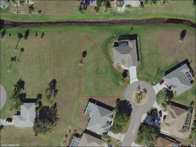 7343 N Ficus Tree, Punta Gorda, FL 33955 (MLS #O5845504) :: Florida Real Estate Sellers at Keller Williams Realty