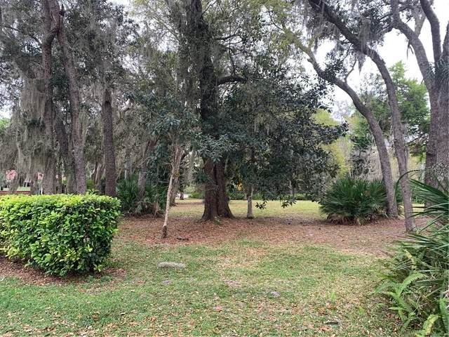 2250 Mimosa Lane, Deland, FL 32724 (MLS #O5845585) :: Sarasota Home Specialists