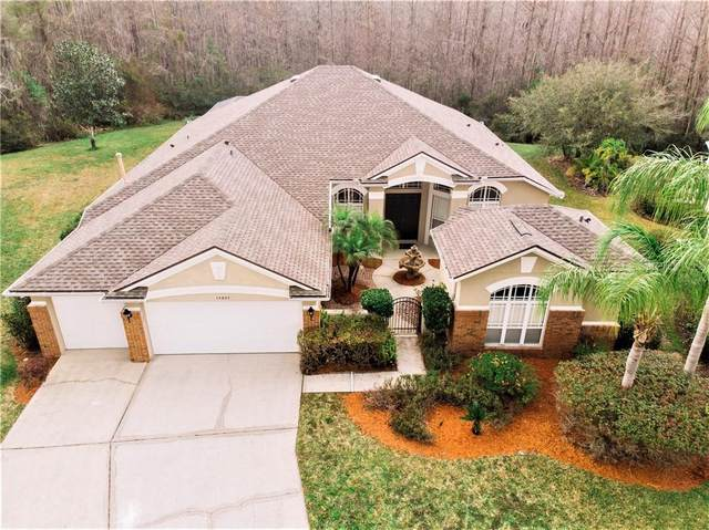 14807 Via Winghurst Court, Orlando, FL 32828 (MLS #O5845628) :: Griffin Group
