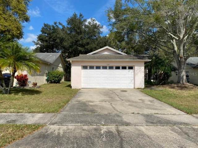 5309 Conway Oaks Court, Orlando, FL 32812 (MLS #O5845738) :: Cartwright Realty