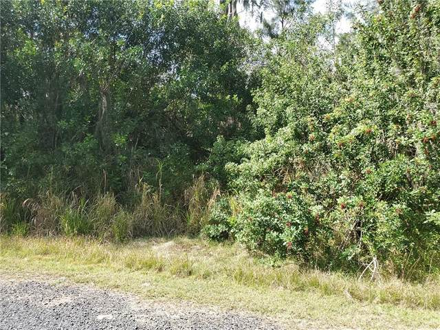 Tohopekaliga Drive, Saint Cloud, FL 34772 (MLS #O5845779) :: Lockhart & Walseth Team, Realtors