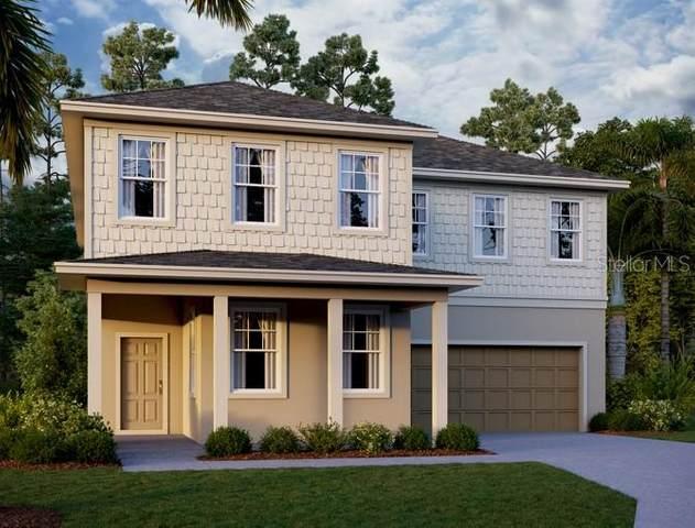561 Steerview Street, Saint Cloud, FL 34771 (MLS #O5845849) :: Griffin Group