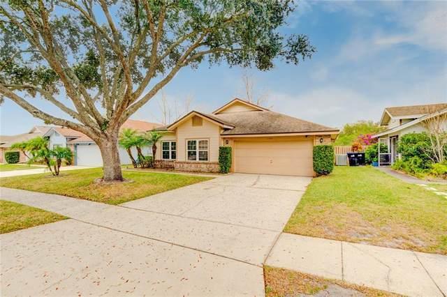 11330 Cypress Leaf Drive, Orlando, FL 32825 (MLS #O5845979) :: CENTURY 21 OneBlue