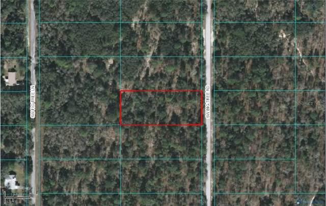 0 SW Big Tree Road, Dunnellon, FL 34431 (MLS #O5846096) :: Lock & Key Realty