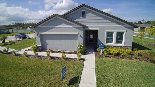 2996 Neverland Drive, New Smyrna Beach, FL 32168 (MLS #O5846147) :: Griffin Group