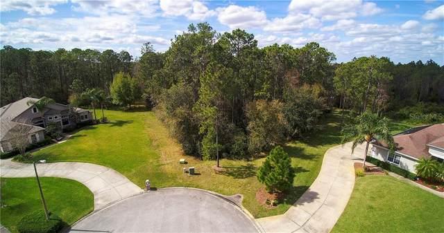 0 Bramble Bush Court, Orlando, FL 32832 (MLS #O5846285) :: Bustamante Real Estate