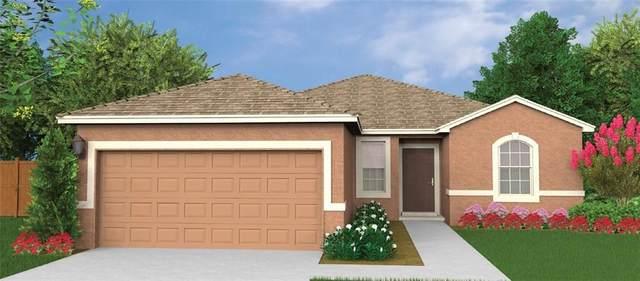 181 Sunny Day Way, Davenport, FL 33897 (MLS #O5846292) :: Florida Real Estate Sellers at Keller Williams Realty