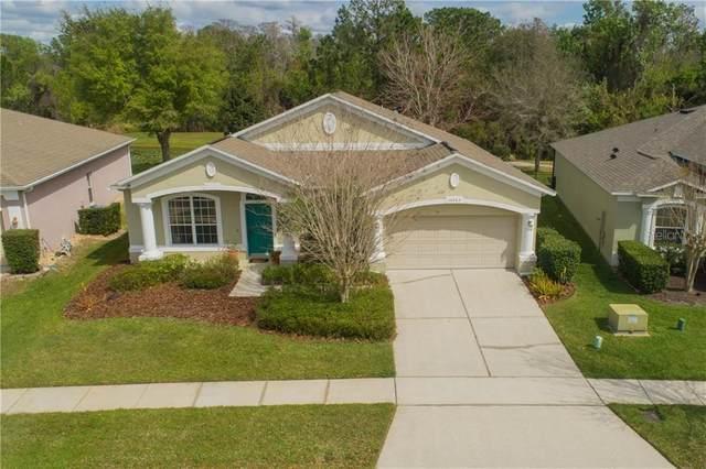 10263 Sandy Marsh Lane, Orlando, FL 32832 (MLS #O5846343) :: Rabell Realty Group