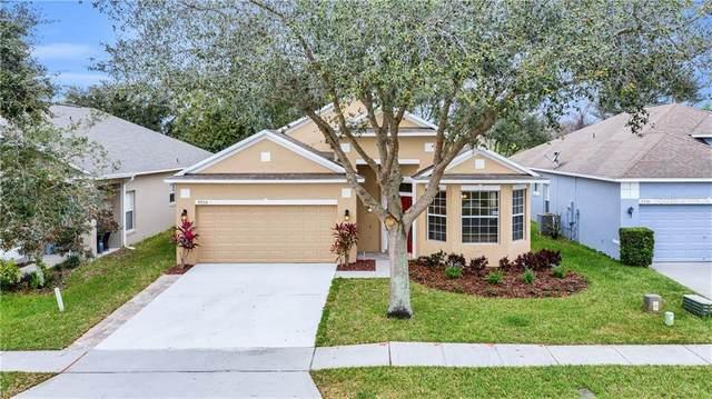 9954 Hidden Dunes Lane, Orlando, FL 32832 (MLS #O5846349) :: Rabell Realty Group