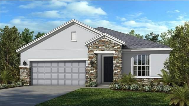 1582 Myrtle Oaks Trail, Oviedo, FL 32765 (MLS #O5846469) :: Bustamante Real Estate