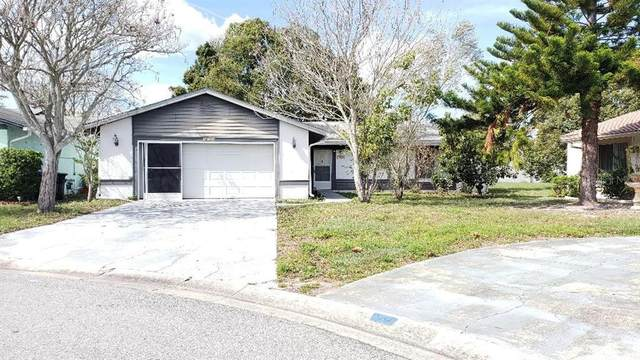 10003 Gannon Lane, Orlando, FL 32821 (MLS #O5846544) :: RE/MAX Realtec Group
