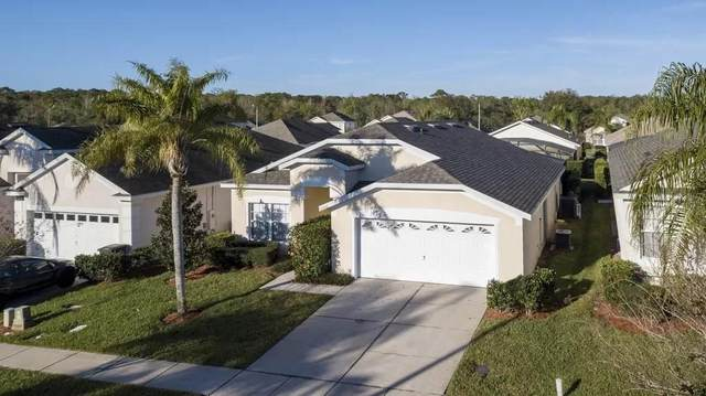 2220 Wyndham Palms Way, Kissimmee, FL 34747 (MLS #O5846667) :: The Duncan Duo Team