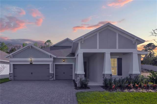 981 Talon Place, Winter Springs, FL 32708 (MLS #O5846736) :: Cartwright Realty
