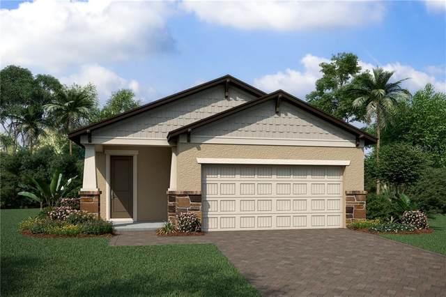 9818 Aurea Moss Lane, Orlando, FL 32832 (MLS #O5846774) :: The Light Team