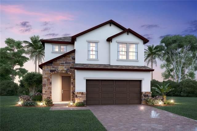 9812 Aurea Moss Lane, Orlando, FL 32832 (MLS #O5846789) :: The Light Team