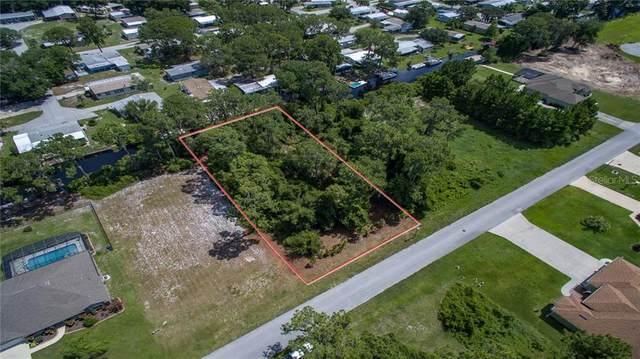 12045 Eagle Point Court, Leesburg, FL 34788 (MLS #O5846950) :: Sarasota Home Specialists