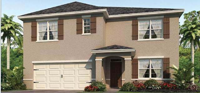 3383 Summerdale Way, Kissimmee, FL 34746 (MLS #O5847066) :: Burwell Real Estate
