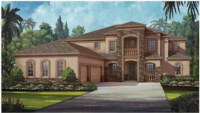7460 John Hancock Drive, Winter Garden, FL 34787 (MLS #O5847965) :: Bustamante Real Estate