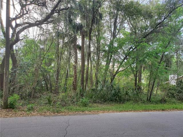 Yalaha Road, Yalaha, FL 34797 (MLS #O5848742) :: Rabell Realty Group