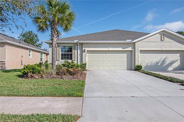 33043 Windelstraw Drive, Wesley Chapel, FL 33545 (MLS #O5848855) :: Team Bohannon Keller Williams, Tampa Properties