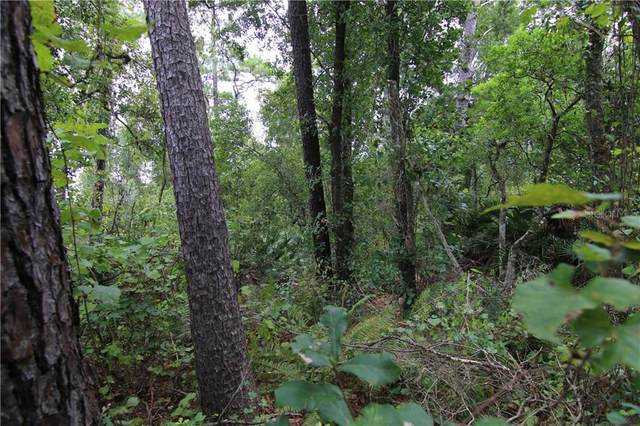 Hwy 44 Near Cr 439 Road, Eustis, FL 32736 (MLS #O5849018) :: The A Team of Charles Rutenberg Realty