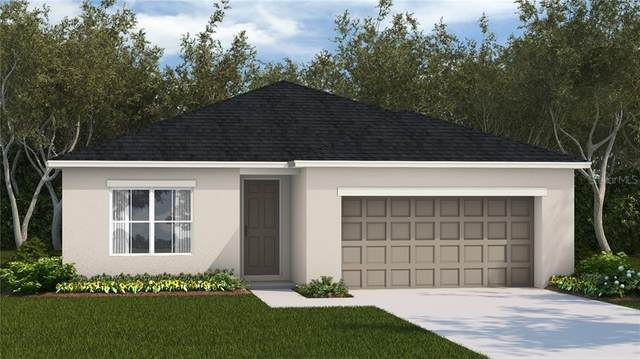 Address Not Published, Grand Island, FL 32735 (MLS #O5849820) :: The Duncan Duo Team