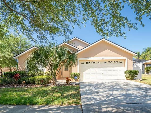 16143 Egret Hill Street, Clermont, FL 34714 (MLS #O5849988) :: EXIT King Realty