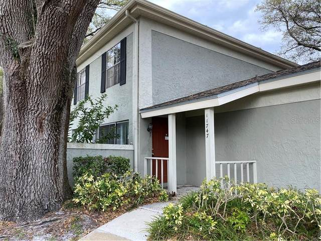 11747 Raintree Drive, Tampa, FL 33617 (MLS #O5850025) :: Griffin Group