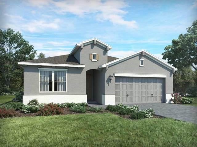 12575 Ryegrass Loop, Parrish, FL 34219 (MLS #O5850419) :: Alpha Equity Team