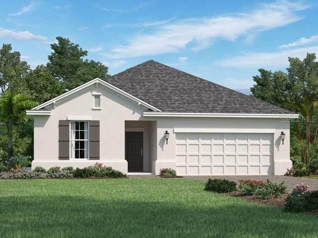 12571 Ryegrass Loop, Parrish, FL 34219 (MLS #O5850425) :: Alpha Equity Team