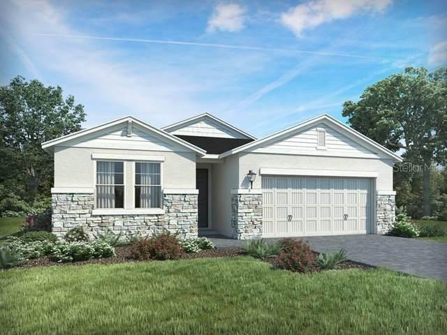 12569 Ryegrass Loop, Parrish, FL 34219 (MLS #O5850435) :: Alpha Equity Team