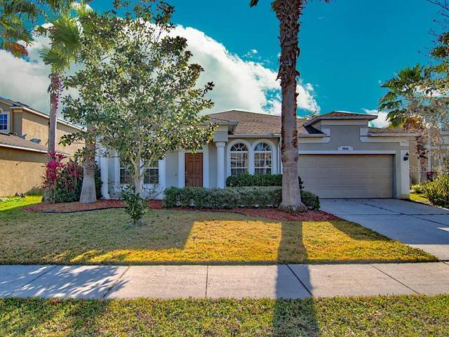 9920 Mountain Lake Drive, Orlando, FL 32832 (MLS #O5850523) :: The Light Team