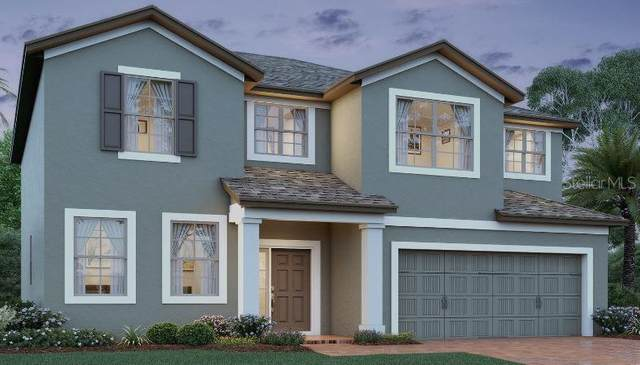 3387 Edgehill Court, Saint Cloud, FL 34772 (MLS #O5850861) :: Griffin Group