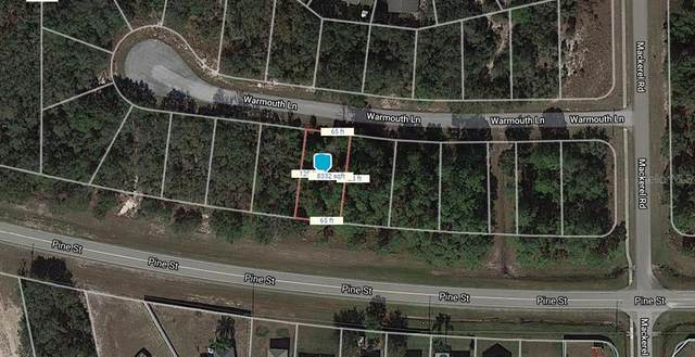 112 Warmouth Lane, Poinciana, FL 34759 (MLS #O5851031) :: Bustamante Real Estate