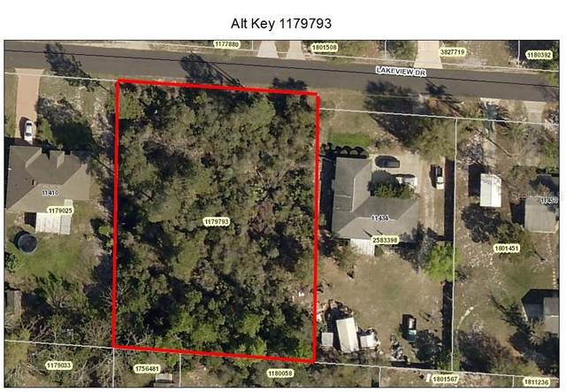 Lot 148 Lakeview Drive, Leesburg, FL 34788 (MLS #O5851747) :: Team Bohannon Keller Williams, Tampa Properties