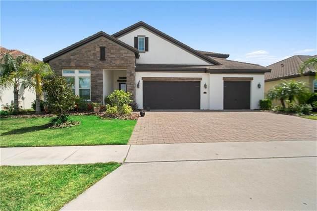 8083 Chilton Drive, Orlando, FL 32836 (MLS #O5851968) :: Homepride Realty Services