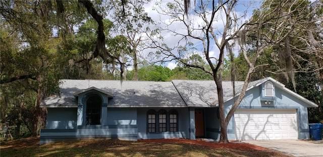 450 Pine Street, Enterprise, FL 32725 (MLS #O5852373) :: Team Bohannon Keller Williams, Tampa Properties