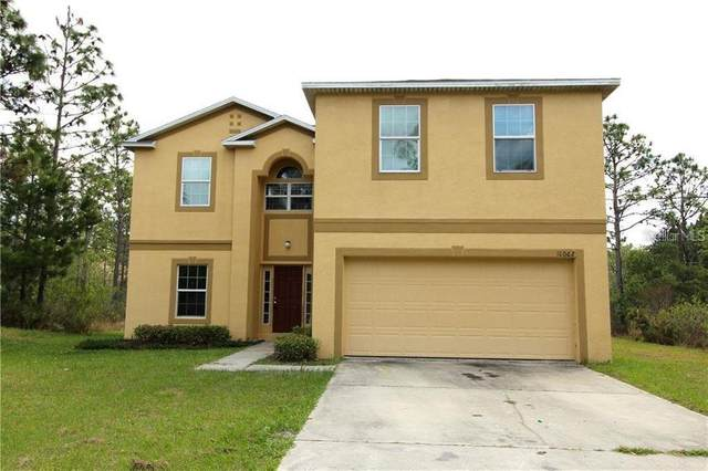 18062 Palmdale Road, Weeki Wachee, FL 34614 (MLS #O5852861) :: The Light Team
