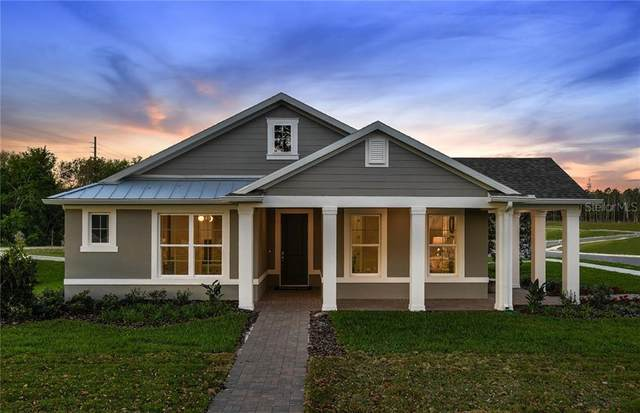 1400 High Springs Lane, Oakland, FL 34787 (MLS #O5853226) :: Key Classic Realty