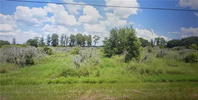 7511 Florida Boys Ranch Road, Groveland, FL 34736 (MLS #O5853426) :: Lovitch Group, Keller Williams Realty South Shore