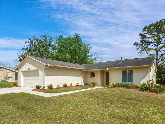 10429 Lazy Lake Drive, Orlando, FL 32821 (MLS #O5853715) :: EXIT King Realty